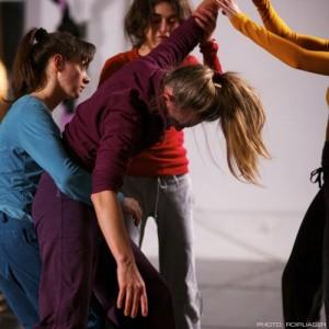 Danza Contact e Movimento Organico